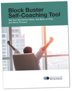 Practice to Business free offer cover tilted view Block Buster Self-Coaching Tool Get Your Momentum Back, Get Back on Plan, and Move Forward